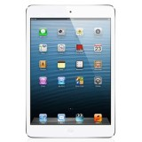 iPad Mini -64GB Cellular-wifi-White
