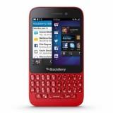 Blakcberry Q5-Red